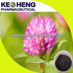 Manufacturer red clover extract/red clover flower extract