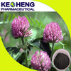red clover herb extract/red clover plant extract