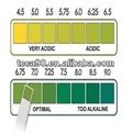 Piscina de la calidad del agua agente de 1 - 14