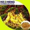 natural ginseng extract/panax ginseng root extract ginsenosides/ginseng extract 0.8%