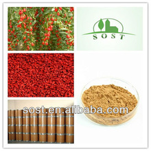 Natural Lycium Extract Herbal Medicine
