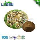 100% Natural Leek seed extract/Semen Allii tuberosi