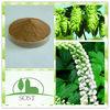 100 Percent Natural Cimicifuga Racemosa Extract