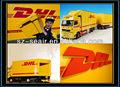 International de DHL fret transitaire entreprises en Shenzhen pour tunisie importateurs