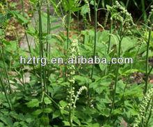 Black Cohosh P.E.Triterpene Glycosides2.5%