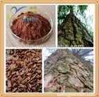 Natural Pine Bark Extract Powder 95% OPC HPLC