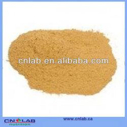 Factory supply Chanca Piedra powder