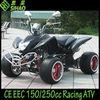 EEC 250cc black street Racing ATV Quad bike