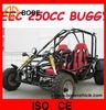 250CC OFF ROAD BUGGY EEC(MC-412)