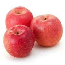 chinese fresh fuji apple/red apple/fresh apple supply