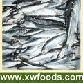 pescado congelado arenque