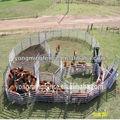 Heavy duty ganado/caballo paneles 1. 8m x 2. 1m 6 ferrocarril( nuevo producto para 2013)