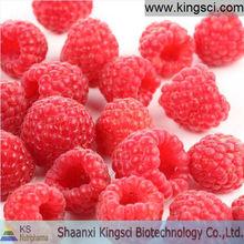 Palm leaf Raspberry Fruit extract Ellagic Acid 30%
