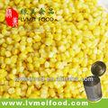 enlatados de milho doce enlatado alimentos com bom preço
