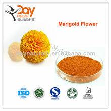 Feed animal Marigold Extract 2% Hot sales