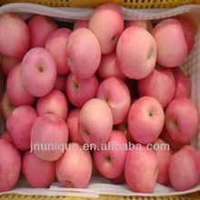 buy apples wholesale,sweet apple fruit,