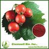 Rose hip Fruit Extract/ Ascorbic Acid Vitamin C 5%-10%