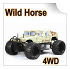 FS11802 1/5 Scale 4WD Gas Hammer RC CAR (Wild Horse)