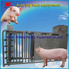 Auto Galvanized Electronic Pig Equipment