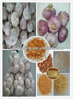 GAP/ KOSHER/ HALAL Natural Normal White Garlic