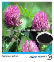 Red clover extract 20% Isoflavones