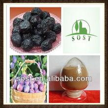 Herbal Plant Powder Cherry Plum Extract