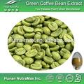 순수 천연 녹색 커피 콩 추출물 chlorogenic 산 25%, 30%, 45%, 50%