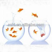 Reasonable acrylic aquarium&Simple perspex aquarium