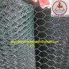 black vinyl coated wire mesh