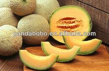 Delicions Fresh Hami melon Fruits