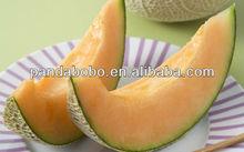 Juicy Hami melon Fruits