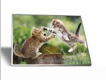 """Laptop screen panel wxga led lcd 15.6"""" au optronics b156xw02 v.2 glossy cracked"""