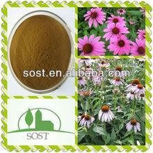 Top Quality And Best Price Echinacea Purpurea Extract
