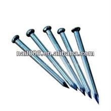 Galvanized concrete steel nails (FACTORY)