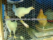 Chicken Wire Mesh Net(Hot sale)