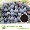 Blueberry Fruit Extract Powder Anthocyanidins 5%-25%