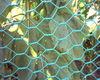 hexagonall wire mesh /aanping hexagonal mesh