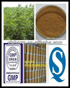 Extract Black Tea Extract,organic black tea extract