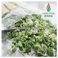 Ad secos verde cebola chinesa/desidratados secas cebolinha