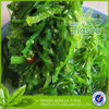 Seaweed salad frozen wakame salad uk health food