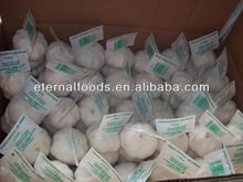 Chinese Fresh White Garlic