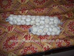 Chinese Fresh Braids Garlic