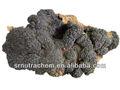 Di elevata purezza estratto chaga/obliquoinonotus polisaccaridi estratti