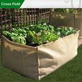 Eco- di iuta amichevole crescere borsa, iuta sacchetto giardino