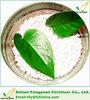 plant organic fertilizer natural boric fertilizer for soil conditioner
