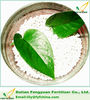 plant organic fertilizer natural boric fertilizer for soil conditioner