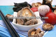 dried mushrooms floral shiitake mushroom recipes