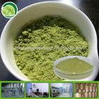 organic matcha tea powder