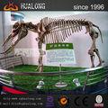 el museo de artículos modelo elefante fósiles