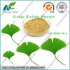 High quality ginkgo biloba extract with total ginkgo flavone